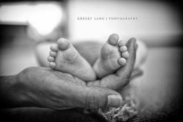 Fathers hands and new born baby feet (Explored)