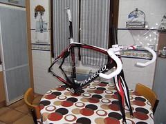 PINARELLO 019 (joey2_k) Tags: bike prince frame d2 dogma pinarello