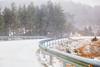De vuelta y nevando (Jose Casielles) Tags: arboles carretera nieve nevada paisaje peligro frío hielo aventura yecla ríocuervo tragacete fotografíasjcasielles cuencavegadelcodorno