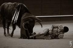 Ivn Vicente (FJimenez92) Tags: toros bullfight leandro valdemorillo morenitodearanda ivanvicente