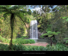 Millaa Millaa Falls, Far North Queensland, Australia :: HDR :: 0.6 ND Lee Filter (:: Artie | Photography ::) Tags: hdr millaamillaa waterfallcircuit waterfall tropical rainforest canon 5dmarkii 5dm2 wideangle ef f4l 1740mm lee filter 06nd 06 tripod 3xp photoshop cs3 photomatix tonemap tonemapping farnorthqueensland cairns athertontablelands australia artie