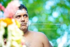 Cavadee portrait, Mauritius - 2 (Pixelinthebox) Tags: portrait nikon piercing mauritius cavadee ilemaurice tamul d700 pixelinthebox julienvenner thaipoosum thaipoosumcavadee