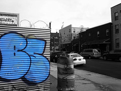 bs (phone pic) (setlasmon) Tags: new york nyc streetart newyork brooklyn photography graffiti seth phonepic photos bs cellphone walkabout photoediting bk newyorkers artart twitter rareform setlasmon sethalexanderlassman sethlassman setalexandor