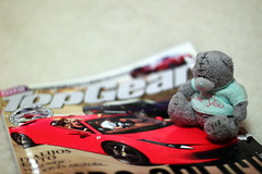 Pukatukas is reading Top Gear (KaterRina) Tags: bear canon magazine toy 50mm14 topgear carmagazine oneobject365daysproject pukatukas
