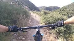 The varied terrain of San Luis Obispo makes for wonderful and diverse riding. (thor_larsen) Tags: mountainbike mtb sanluisobispo froomcreek