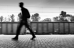 In Motion (marcin baran) Tags: street city people urban blackandwhite bw man motion black blur monochrome station silhouette train walking person mono blackwhite movement blurry fuji walk candid streetphotography poland polska move human fujifilm streetphoto 365 whote element gliwice candidphotography x100 marcinbaran x100t