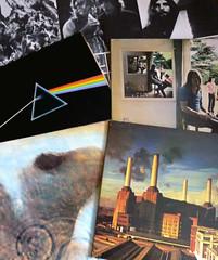 Challenge Friday, week 20, theme pink - Pink Floyd (karenblakeman) Tags: pink vinyl pinkfloyd albums 2016 cf16 challengefriday