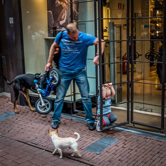 Bored kid and dog @ Amsterdam (PaulHoo) Tags: life city people urban dog man holland window netherlands amsterdam shop square kid nikon play candid citylife bored parent squareformat care parenting 2014 streetcandid