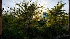 _D7K2080-Pano-Edit.jpg (markiisi) Tags: park trees sunset summer plants finland spring helsinki cityscape foliage midnightsun pitjnmki pitsku