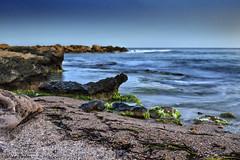 Algas (jmpastorg) Tags: sea espaa landscape mar spain mediterraneo paisaje led alicante 1855 largaexposicin longeexposure d5100