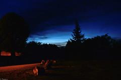 Nocturne (4) (Mystycat =^..^=) Tags: sky france night village ciel arbres pierres paysage soir nuit charente poitoucharentes