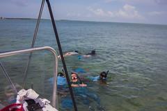 IMG_6771 (Florida Sea Grant) Tags: coral kids youth keys snorkel gulf florida dive sponge keyswest mahoganyyouth
