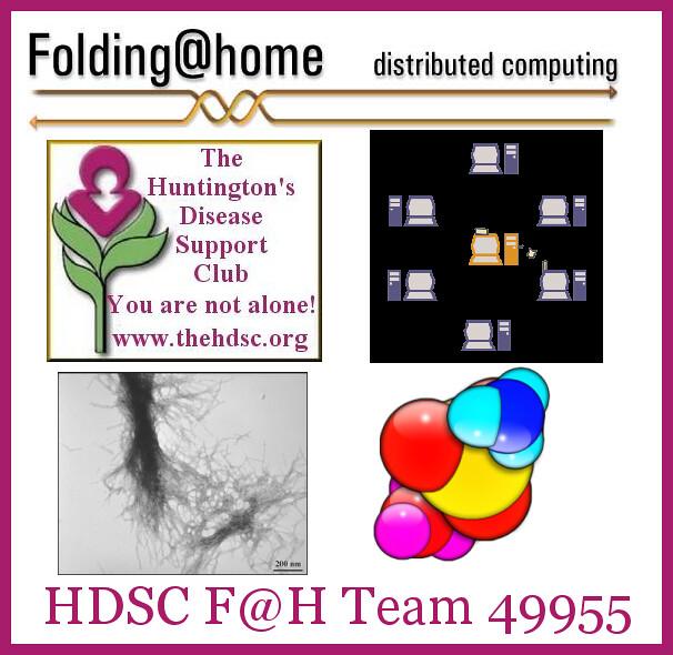 HDSC Folding at Home Team 49955 Logo