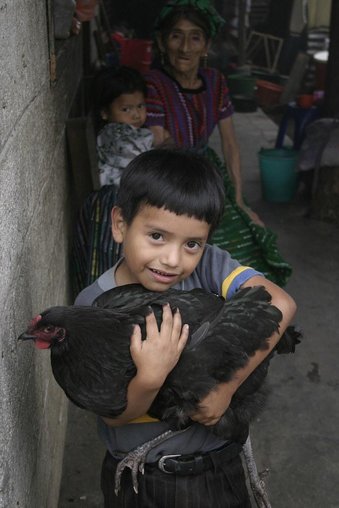 Enfant Poule noire