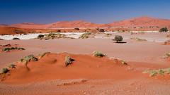 Dunes of Sesriem-Sossusvlei NP | 10