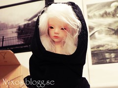 Myuu myuu is here (Nyxxos) Tags: white hair doll bjd bella chateau msd dollchateau nyxos