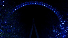 2011-11-29 The London Eye at Night in Blue, London (MedEighty) Tags: uk november blue light england london wheel night dark lights perspective londoneye ferris icon ferriswheel leds common iconic theeye 2011 medeighty