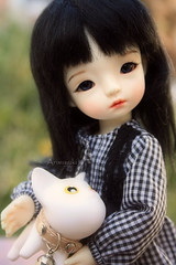 Daitsumi & new friend (Arisuyuki) Tags: cat doll bjd dollmore yosd babylambmiadoll miasbabydollaga daitsumi
