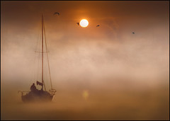 Morning Departure (adrians_art) Tags: morning mist birds fog sunrise reflections boats silhouettes rivers yachts seaguls