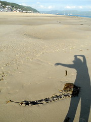 4301_Aberdyfi11 (looklooklooking) Tags: shadow seaweed london art feet beach water river happy photography dance movement sand artist dancing legs contemporary joy performance biosphere estuary pointofview glorious jules alive author tidal myeyes rapture liveart fee fineartphotography rockpools aberdyfi auteur tidalpools greem shadowdance mybody dyfi corporeal shotfrominside carefreemoments dyfibiosphere juleslooklooklooking looklooklooking juleslooklooklookingcom instagramjuleslooklooklooking