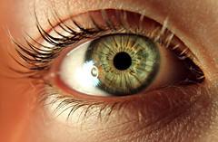 (eliana.alban) Tags: macro green eye lashes
