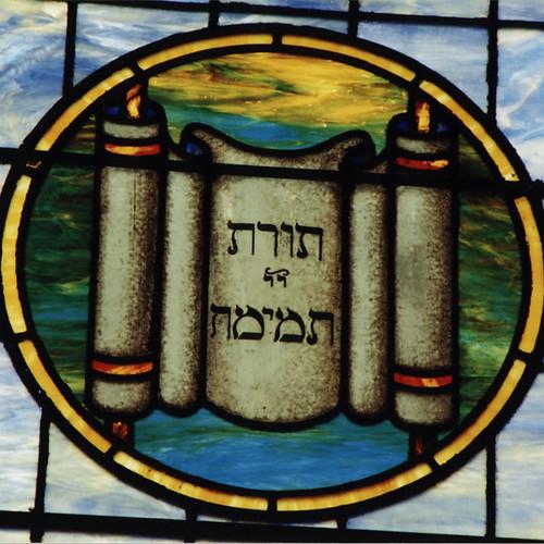 From flickr.com: Torah {MID-116068}