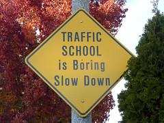 Traffic School Is Boring Slow Down