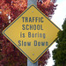 Traffic School Is Boring Slow Down