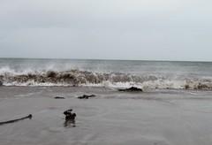 IMG_0476 (hamishblanford) Tags: seascap