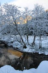 IMG_8911 Langs Postvegen (dese) Tags: schnee winter snow reflection nature norway reflections photo vinter foto nieve sneeuw natur natura neve tre snö kar hordaland norvegia snø snijeg vestlandet elv fusa dese снег 2011 december17 qar postvegen desefoto strandvik–fusa