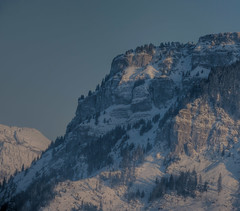 Snowy Mountain (Daniel J. Mueller) Tags: schnee trees sun mountain snow berg schweiz switzerland evening rocks bume canton schwyz abendsonne kanton