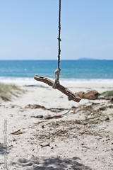 Rope Swing (Dylan Farrow) Tags: blue sea newzealand sun tree beach sand bokeh rope swing website pixelpost flickrpost whangapoua 450d notadded martinshousewarming
