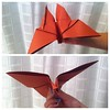 Awesome Paper Moth, Made By The Kid