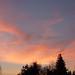 Sunset Over Palo Alto