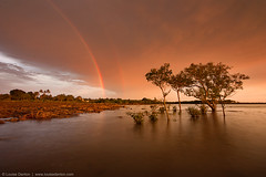 Make a wish (Louise Denton) Tags: longexposure trees sunset red sky rainbow redsky 365 mangroves lastlight goldenlight louisedentonphotography