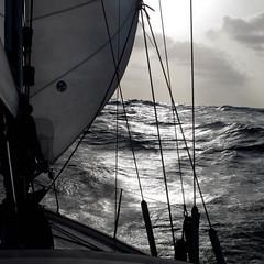 Tenerife-Cape Verde (ernst schade) Tags: ocean sea boat sailing sail watersports atlanticocean transat transatlanticcrossing syjustomedio