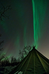 Aurora borealis stripe (Per Ivar Somby) Tags: nightshot tent nightlight nordnorge auroraborealis troms nordlys northernlight northernnorway tromsya lavvu polarlight polarlys arcticlight naturephenomena