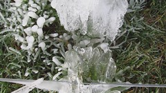 An icy blast (ambo333) Tags: uk winter england cold ice water grass frozen farm farming pipe h2o freeze cumbria icicle icy icicles brampton trough middlefarm frozengrass oldchurchlane oldchurchfarm bramptonweather bramptonweatherphotos