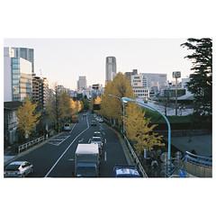 (Kerb ) Tags: japan tokyo december  nippon  analogue kerb 2011  nikonfg20 201112 f1000005 efinitiuxisuper200 kerbwang nikkor5018d nikonfg20film012 10012130 tokyo2011day4