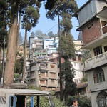 "Darjeeling Buildings <a style=""margin-left:10px; font-size:0.8em;"" href=""http://www.flickr.com/photos/14315427@N00/6829289551/"" target=""_blank"">@flickr</a>"