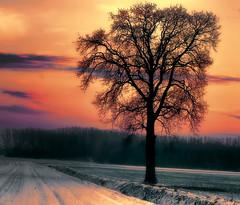 Winter Sunset (Supervliegzus) Tags: winter sunset