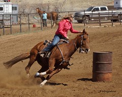 Dewey Barrel Race (Garagewerks) Tags: arizona horse woman sport female race all sony country barrel arena rodeo dewey cowgirl athlete equine 50500mm views50 views100 views200 views300 views250 views150 f4563 slta77v