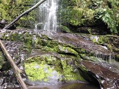 lorne 386 (raqib) Tags: holiday nature water trekking trek waterfall hiking victoria hike falls bushwalking vegetation rc lorne iphone erskine erskinefalls waterfallaustralia
