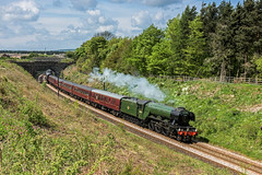 Sunderland Flyer (4486Merlin) Tags: england europe unitedkingdom transport steam northeast railways flyingscotsman countydurham gbr sunderlandbridge theflyingscotsman 60103 exlner lnerclassa3 croxdaleandhett