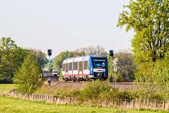 IMG_0016 (BildFlut) Tags: train hamburg rail spot picoftheday neumnster akn