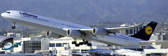 Lufthansa A340-642 [D-AIHV] (aircraftvideos) Tags: california airplane airport traffic angeles aircraft aviation uae cargo airbus a380 ek boeing lax 707 americanairlines 777 aa 747 a330 757 airliner a340 767 721 braniff 737 a320 aal 727 733 773 a319 a321 789 787 772 744 a300 losangelesinternationalairport 722 a318 a333 748 734 a332 764 738 klax 762 763 74f 77f 788 avgeek 77w 77l a388 braniffinternational 77e 748i avhooker