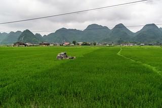 bac son - vietnam 44