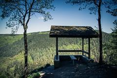 Le point de vue... (Gilderic Photography) Tags: trees nature forest canon de point belgium belgique vue wallonie 500d wallonia ninglinspo gilderic