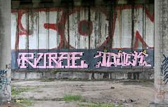 Rubae x Tonek. (rubae1) Tags: pink graffiti ukraine mbk uc ea kyiv faz dma trainline tonek legz rubae fantomz