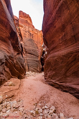 In Buckskin Gulch (mikerhicks) Tags: travel usa southwest nature landscape geotagged outdoors photography utah spring unitedstates desert hiking adventure event backpacking kanab slotcanyon onemile buckskingulch vermilioncliffsnationalmonument geo:country=unitedstates geo:state=utah camera:make=canon vermilioncliffswilderness exif:make=canon geo:city=kanab tokinaatxprosd1116f28ifdx exif:lens=1116mm exif:aperture=45 exif:isospeed=500 exif:focallength=11mm canoneos7dmkii camera:model=canoneos7dmarkii exif:model=canoneos7dmarkii geo:lat=3701639333 geo:lon=11200190167 geo:lon=11200190166667 geo:lat=37016393333333 geo:location=onemile